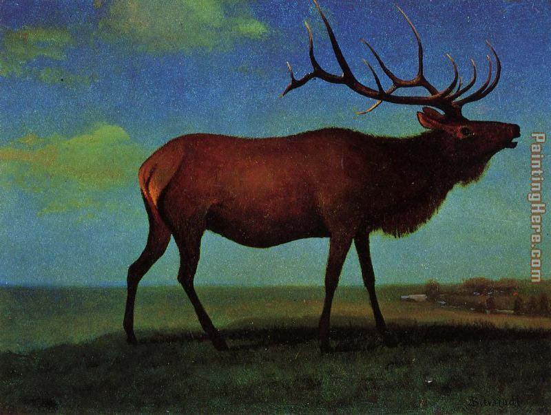 Elk painting - Albert Bierstadt Elk art painting