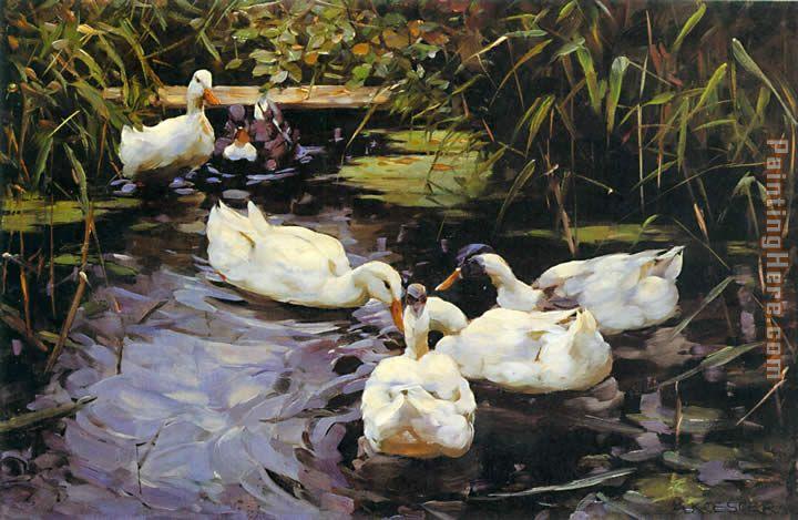 Alexander koester enten auf einem schilfteich painting for Pond reeds for sale