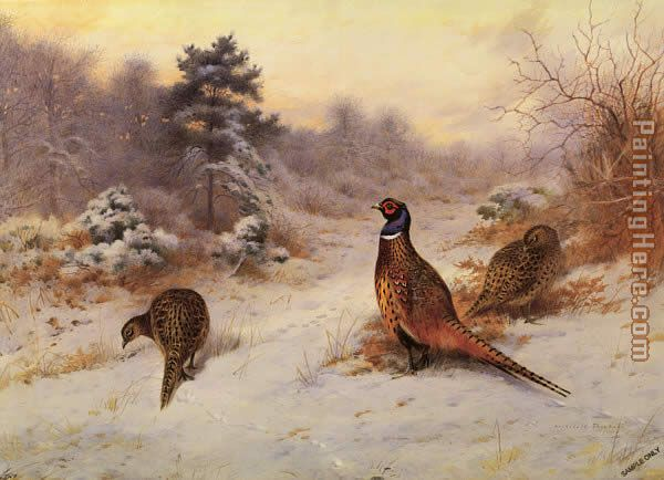 Winter's Sunset painting - Archibald Thorburn Winter's Sunset art painting