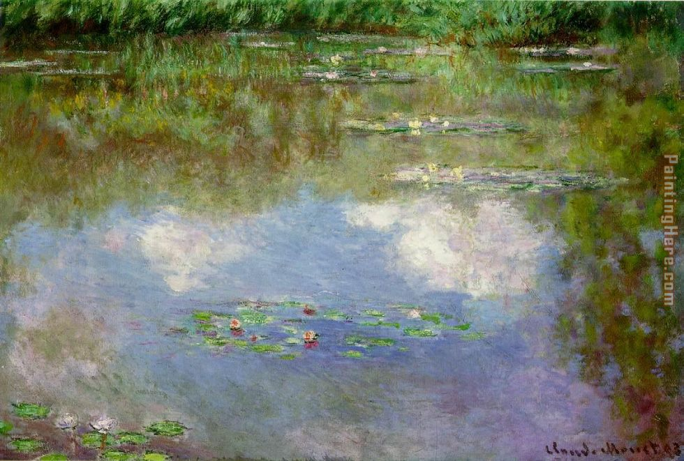 Water Lilies 1903 painting - Claude Monet Water Lilies 1903 art painting