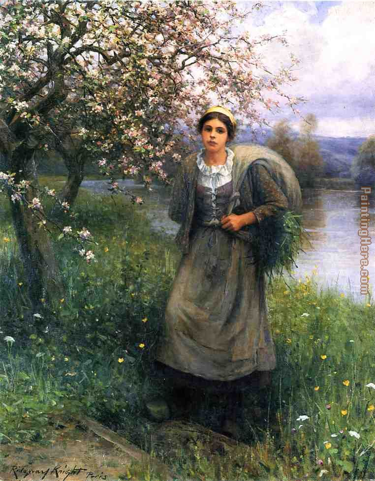 Apple Blossoms in Normandy painting - Daniel Ridgway Knight Apple Blossoms in Normandy art painting