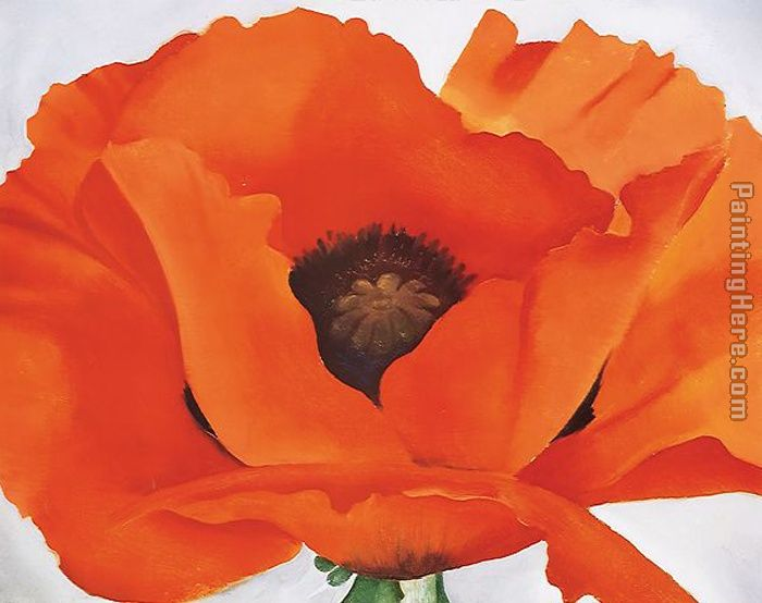 Red Poppy painting - Georgia O'Keeffe Red Poppy art painting