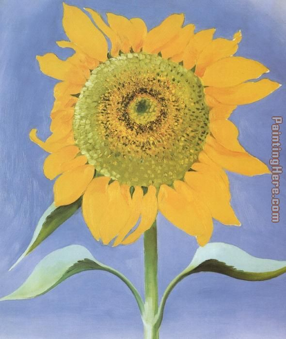 Sunflower, New Mexico 1935 painting - Georgia O'Keeffe Sunflower, New Mexico 1935 art painting