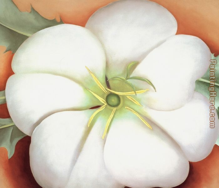 Georgia O'Keeffe White flower on Red Earth No. 1 Art Painting
