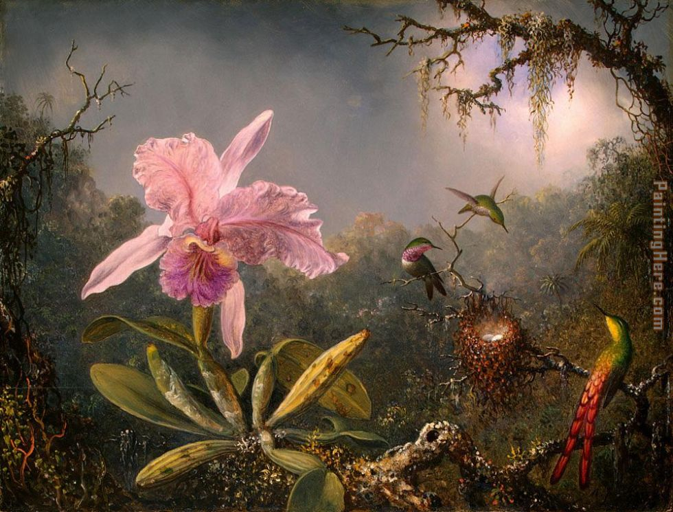 Martin Johnson Heade Cattleya Orchid and Three Brazilian Hummingbirds Art Painting