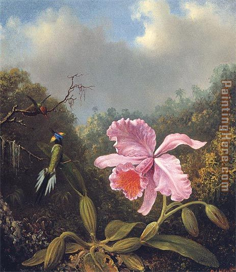 Martin Johnson Heade Fighting Hummingbirds with Pink Orchid Art Painting