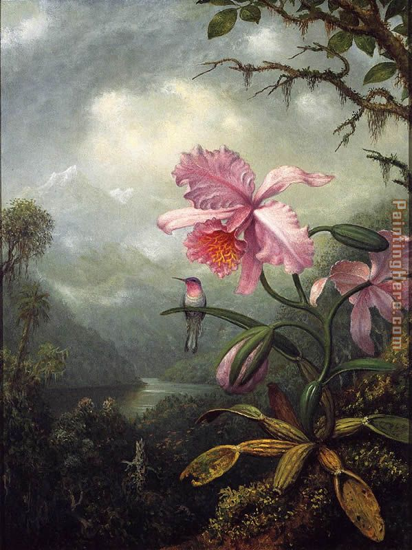 Hummingbird Perched on an Orchid Plant painting - Martin Johnson Heade Hummingbird Perched on an Orchid Plant art painting