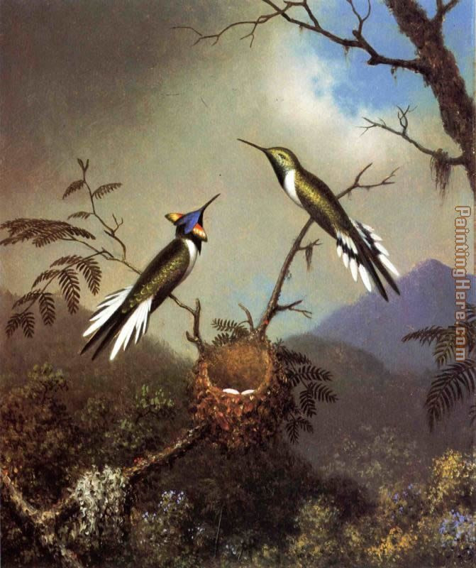Hummingbirds at Their Nest - Sun Gems painting - Martin Johnson Heade Hummingbirds at Their Nest - Sun Gems art painting