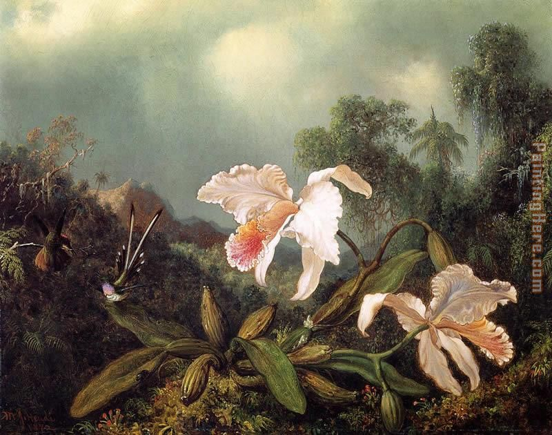Jungle Orchids and Hummingbirds painting - Martin Johnson Heade Jungle Orchids and Hummingbirds art painting