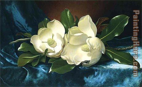 Magnolias on a Blue Velvet Cloth painting - Martin Johnson Heade Magnolias on a Blue Velvet Cloth art painting
