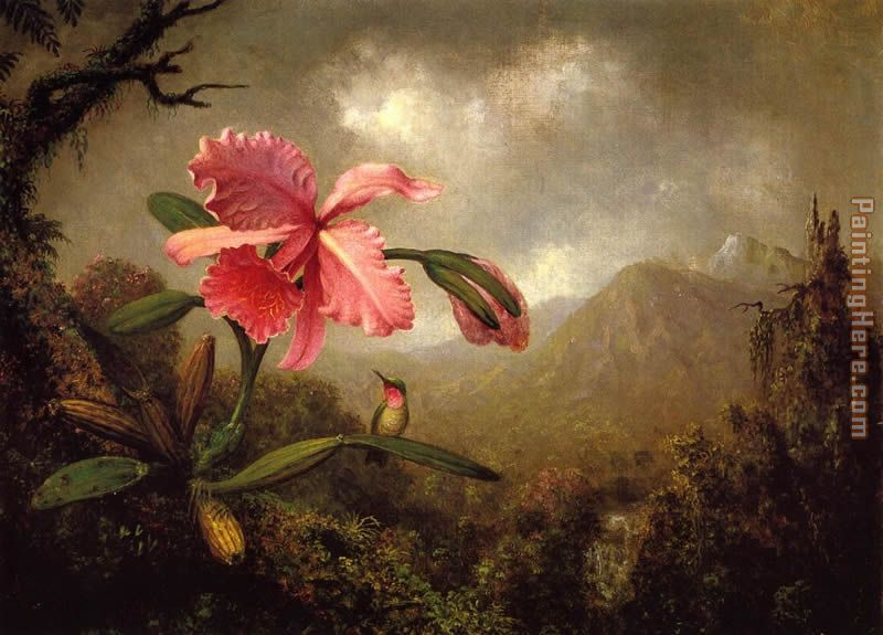 Orchid and Hummingbird near a Mountain Waterfall painting - Martin Johnson Heade Orchid and Hummingbird near a Mountain Waterfall art painting