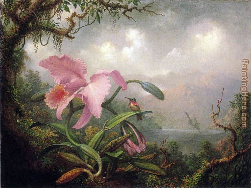 Martin Johnson Heade Orchid and Hummingbird Art Painting