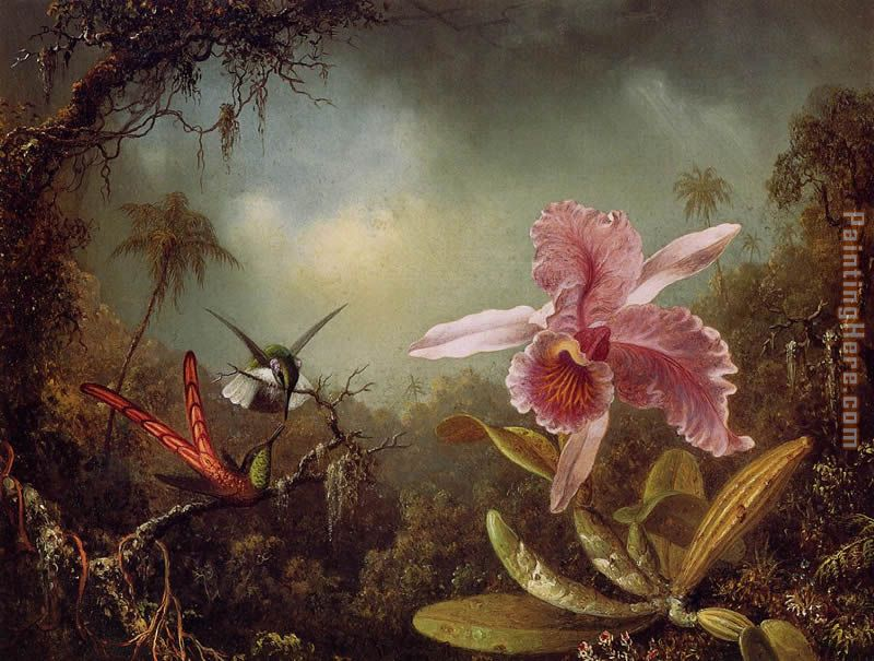 Orchid with Two Hummingbirds painting - Martin Johnson Heade Orchid with Two Hummingbirds art painting