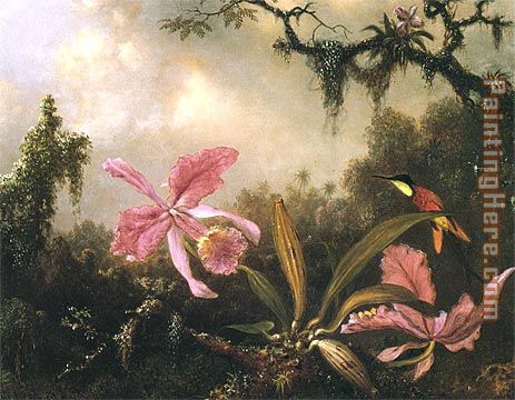 Orchids and Crimson Topaz Hummingbird painting - Martin Johnson Heade Orchids and Crimson Topaz Hummingbird art painting
