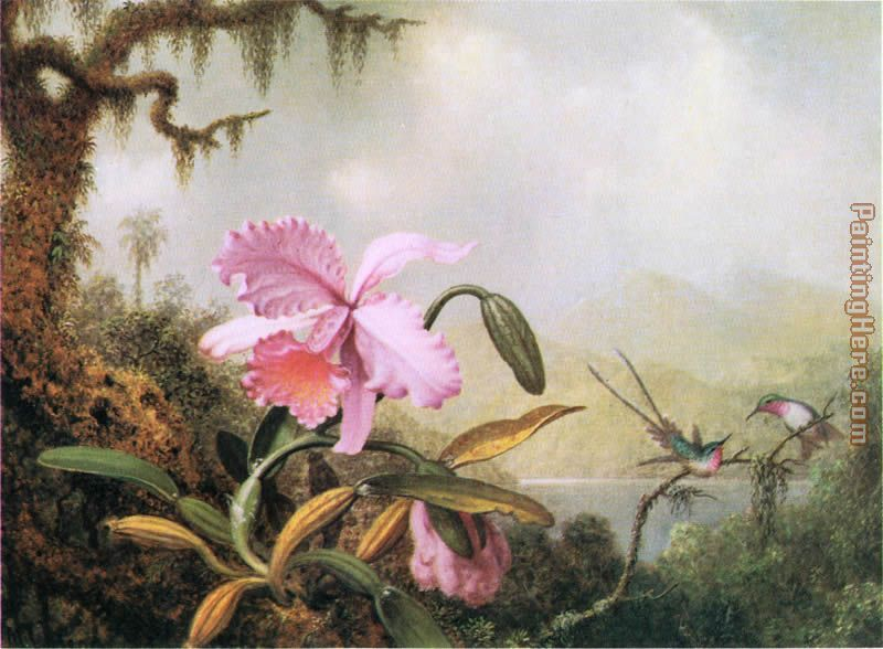 Orchids and Hummingbirds near a Mountain Lake painting - Martin Johnson Heade Orchids and Hummingbirds near a Mountain Lake art painting