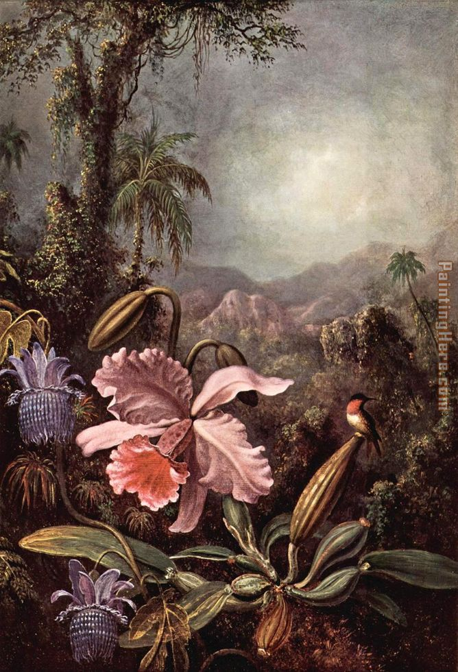 Orchids passion flower and hummingbirds painting - Martin Johnson Heade Orchids passion flower and hummingbirds art painting