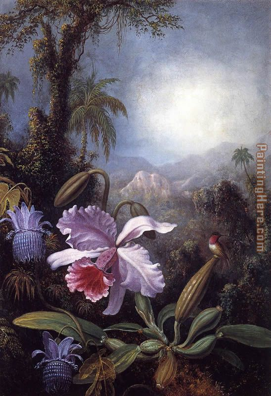 Martin Johnson Heade Orchids, Passion Flowers and Hummingbird Art Painting