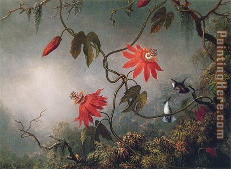 Passion Flowers and Hummingbirds painting - Martin Johnson Heade Passion Flowers and Hummingbirds art painting