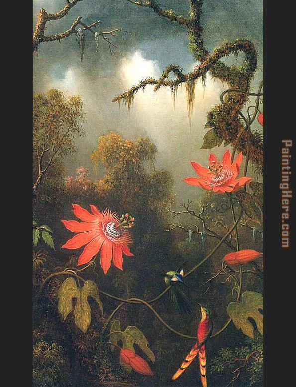 Two Hummingbirds Perched on Passion Flower Vines painting - Martin Johnson Heade Two Hummingbirds Perched on Passion Flower Vines art painting