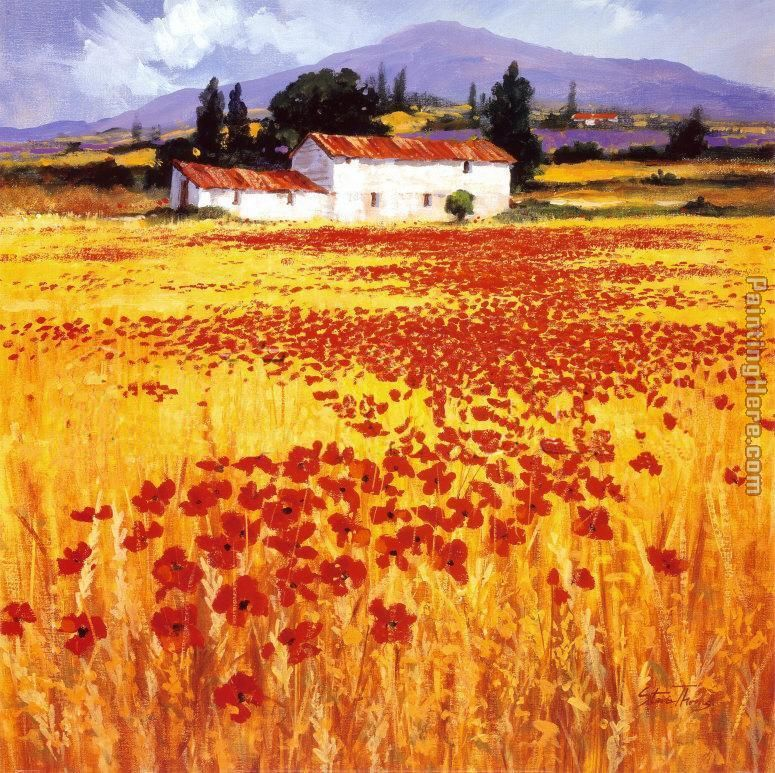 Steve Thoms Poppies Art Painting