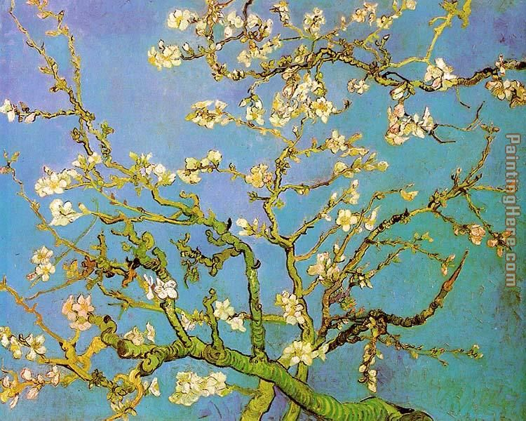 Almond Branches in Bloom painting - Vincent van Gogh Almond Branches in Bloom art painting