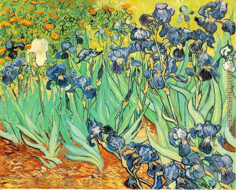 Irises painting - Vincent van Gogh Irises art painting