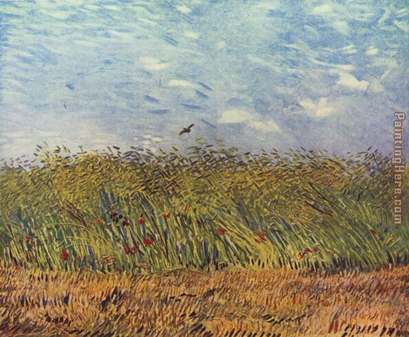 wheat field with a lark 1887 painting - Vincent van Gogh wheat field with a lark 1887 art painting