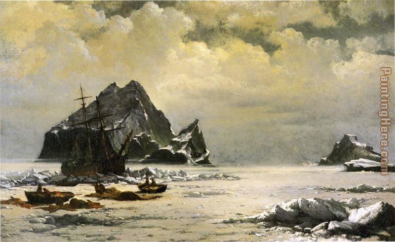 Morning on the Artic Ice Fields painting - William Bradford Morning on the Artic Ice Fields art painting