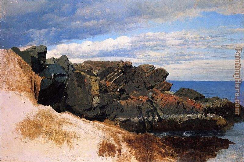 Rock Study at Nahant, Massachusetts painting - William Bradford Rock Study at Nahant, Massachusetts art painting