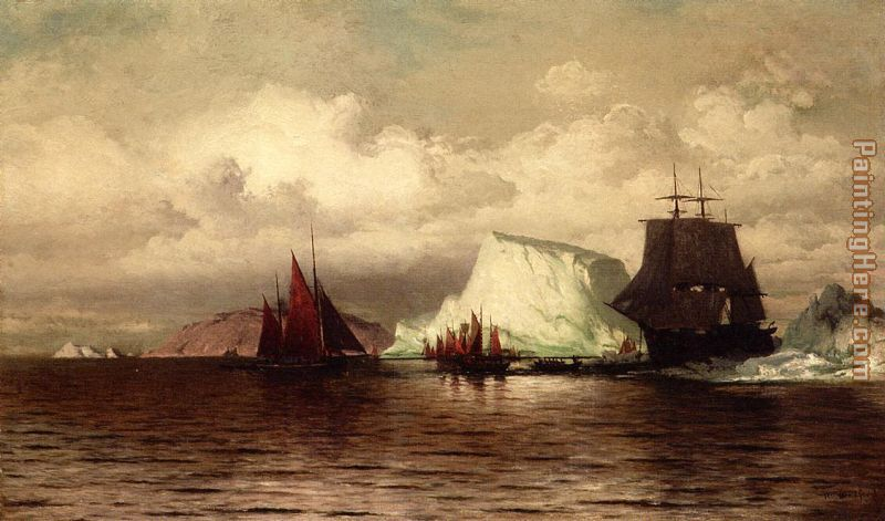 The Coast of Labrador i