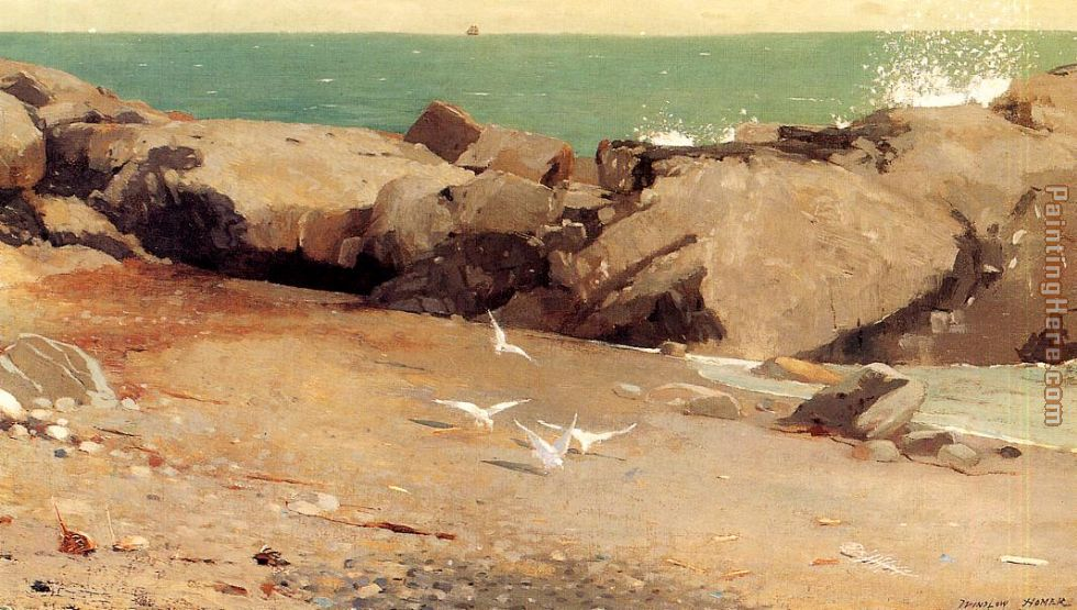 Rocky Coast and Gulls painting - Winslow Homer Rocky Coast and Gulls art painting