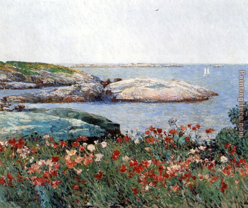 Poppies Isles of Shoals painting - childe hassam Poppies Isles of Shoals art painting