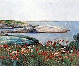 Poppies Isles of Shoals by childe hassam