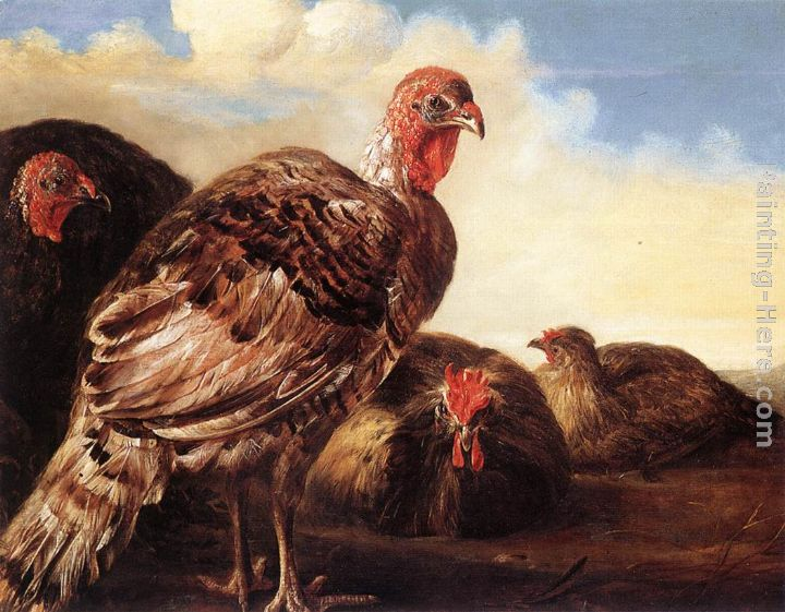 Aelbert Cuyp Domestic Fowl Art Painting