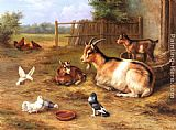 A Farmyard Scene with goats, chickens, doves