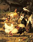 Poultry in a Farmyard