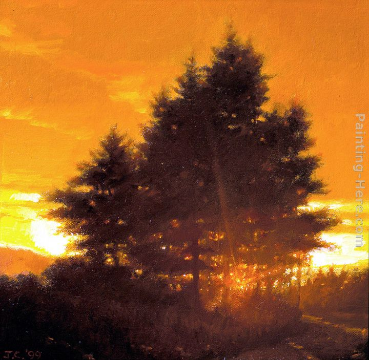 Oil Tree Paintings Sunset Tree Oil on Canvas