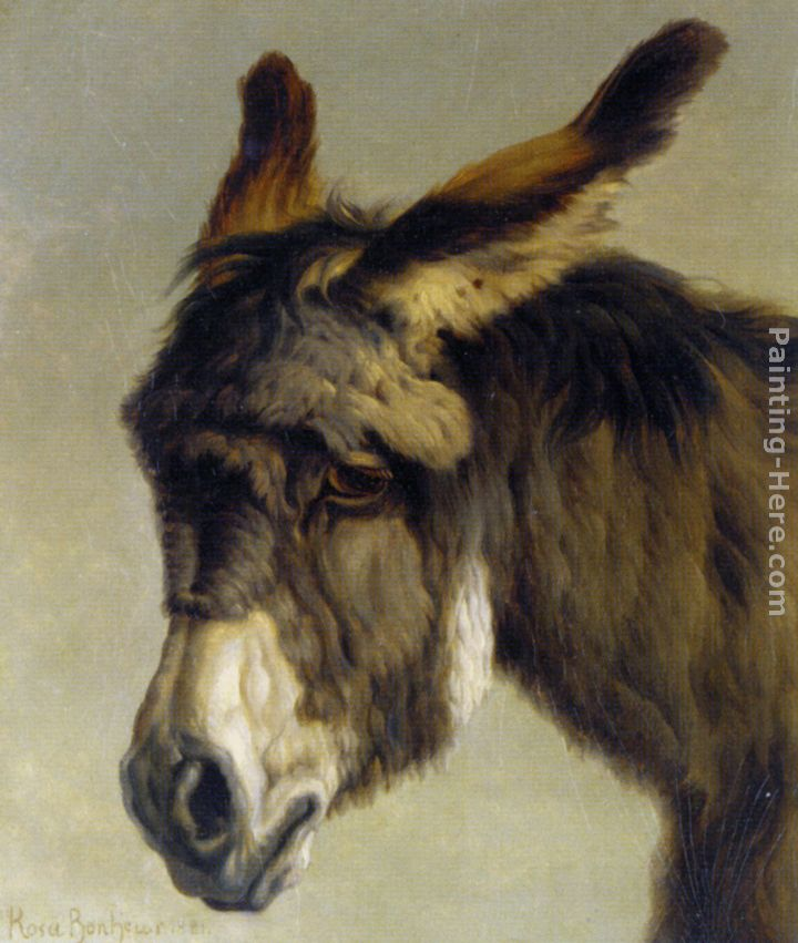 Head of a Donkey painting - Rosa Bonheur Head of a Donkey art painting