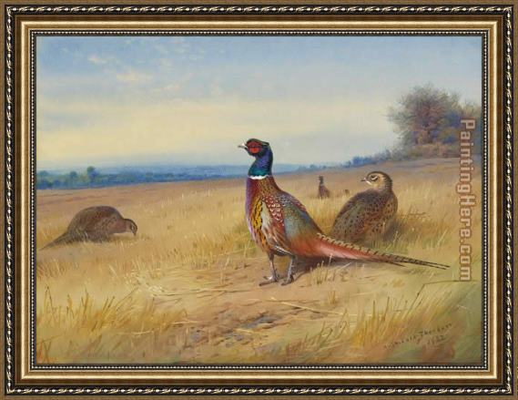 Archibald Thorburn Keeping Watch Framed Painting