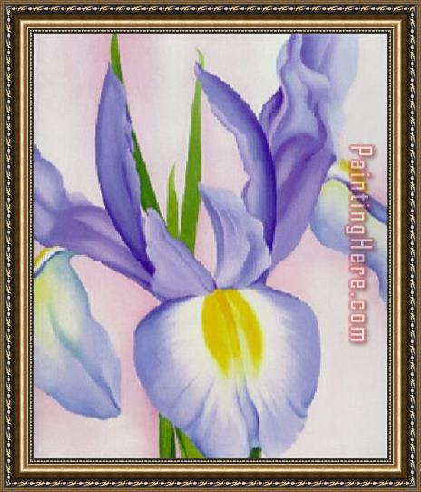 Georgia O'Keeffe Lavender Iris Framed Painting