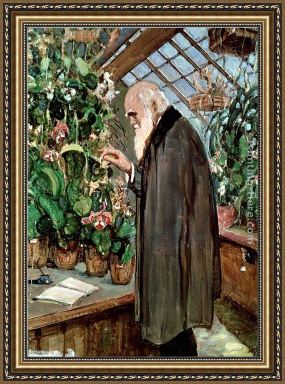 John Collier Charles Robert Darwin Framed Painting for sale ...