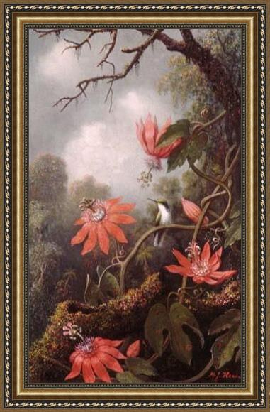Martin Johnson Heade Hummingbird and Passionflowers Framed Painting
