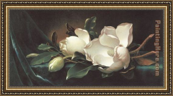Martin Johnson Heade Magnolia Blossoms on Blue Velvet Framed Painting