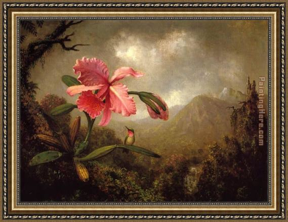 Martin Johnson Heade Orchid and Hummingbird near a Mountain Waterfall Framed Painting