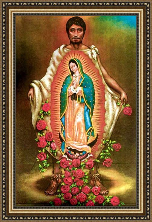 Unknown Artist Our Lady of Guadalupe Framed Painting