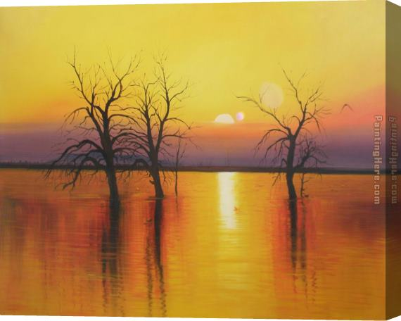 2010 Sunset trees & water Stretched Canvas Painting