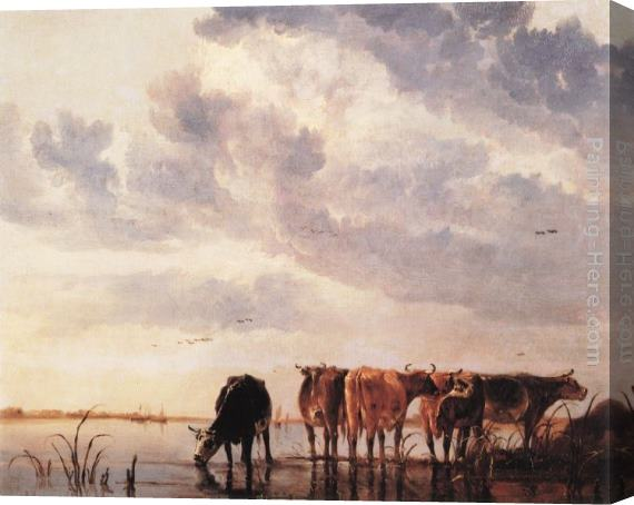 Aelbert Cuyp Cows in a River Stretched Canvas Painting