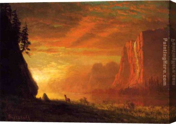 Albert Bierstadt Deer at Sunset Stretched Canvas Painting