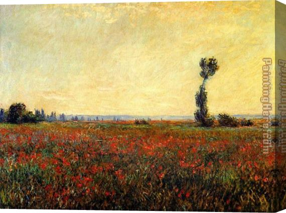 Claude Monet Poppy Landscape Stretched Canvas Painting