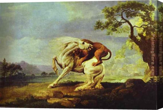 George Stubbs Horse Attacked by a Lion Stretched Canvas Painting